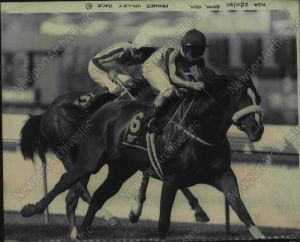 KINGSTON RULE, looking every inch the picture of SECRETARIAT, charges to take the lead in the Moonee Valley Cup in 1990.