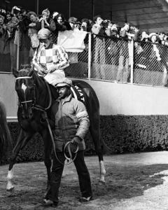 SECRETARIAT goes to the post for the last time at Woodbine in Toronto, Canada, with EDDIE SWEAT by his side.