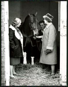 1966: The injured ARKLE visits with his owner, Anne Grosvenor, the Duchess of Westminster. Three years later, succumbing to severe arthritis, ARKLE was gone.