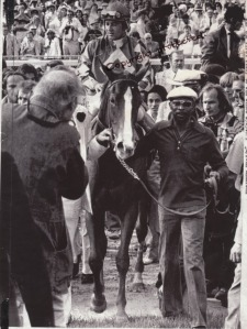 The great TONY LEONARD (back to camera) captures a moment for all time: GENUINE RISK being led in after her win in the Kentucky Derby.