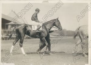 GOSHAWK walks onto the track. Taken in 1923 by the incomparable C.C.Cook.