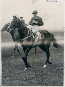 The champion filly, MRS. RUSTOM, shown here in 1934. Bred by the Aga Khan, MRS. RUSTOM was brilliant at two, winning the Gimcrack, Dewhurst and the Ham Stakes.