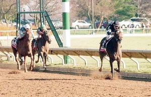 TAKE CHARGE LADY routs them all at Keeneland to win the Spinster. Photo and copyright, AP.