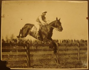 "Another great American horse who competed in the Grand National in 1928, BILLY BARTON was also inclined to be ""washy."" This, however, never dampened his brilliance: despite falling at the last fence, BILLY came home second to TIPPERARY TIM at Aintree. They were the only two horses to finish the course that year."