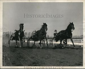 This may look like a typical shot, but it isn't. It shows the three gaits used by trotters and pacers all in the same frame.