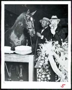 MAN O' WAR celebrates his twenty-first birthday with a cake. He is flanked by his beloved Will Harbut and radio sportscaster, the legendary Clem McCarthy.