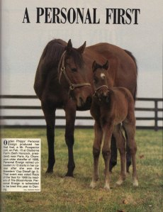 PERSONAL ENSIGN with her colt foal, MINER'S MARK. The dam of MY FLAG and grandam of STORMFLAGFLYING and WAR EMBLEM was a champion from track to foaling barn.