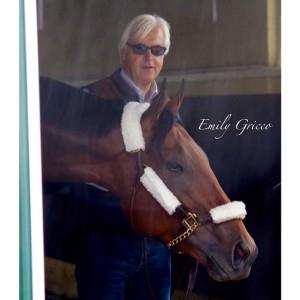 "AMERICAN PHAROAH with HOF trainer, Bob Baffert who says of his champion, ""He is just the sweetest horse."" Photo and copyright, Emily Gricco."