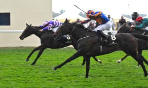 Coming to the wire, BALLYDOYLE chases home SUITS YOU.