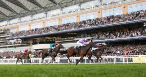 How close was it? SUITS YOU (outside) and BALLYDOYLE (Inside near stands) at the wire.