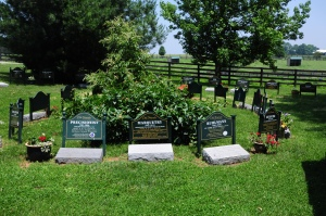 Old Friends HALL OF FAME, where the spirit of greatness mingles with the scents of summer in the Bluegrass. Photo and copyright, Liz Read.