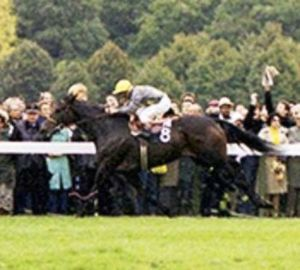"TRILLION was a champion in her day, winning the Prix ganay, the Prix Foy and the Prix d""Harcourt for owners Nelson Bunker Hunt and Edward L. Stephenson. Retired, she foaled the great race mare TRIPTYCH. The great mare appears in TREVE'S female family in the fourth generation."