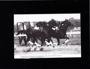 EXTERMINATOR and SUN BRIAR work at Saratoga in 1918.
