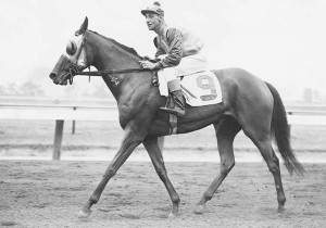 MISTY MORN, a daughter of Princequillo, was in the Fitz stable at the same period as Nashua. She was an exceptional filly. As a broodmare, she was the dam of BOLD LAD and SUCCESSOR, both sired by BOLD RULER.