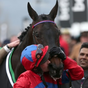 The Kiss: Nico and SPRINTER SACRE in the winner's enclosure, Cheltenham 2016.