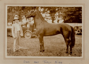 TOPSY NICO and my grandfather, Ormstown Fair in the 1930s.