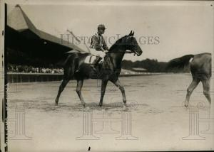 Who better to picture the champion than the great C.C. Cook? Here she is in