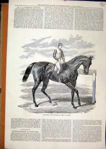 PETRARCH, another St. Leger winner.