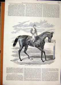 PETRARCH, another St. Leger winner.