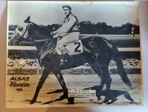The champion ALSAB. Photo and copyright, the estate of W.J. Gray.