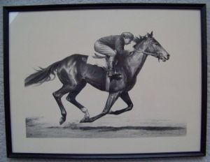 COUNT FLEET rendered by C.W. Anderson during a work. Based on a photograph from 1942/1943, this is a faithful representation of THE COUNT as a youngster.