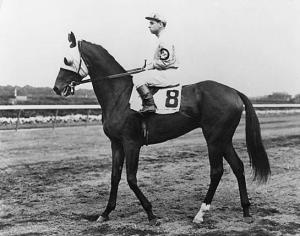 """...He looked more like a filly than a colt."" COUNT FLEET as a two year-old. Photo from THE VAULT'S private collection."