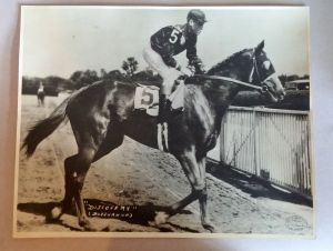 A quite spectacular photograph of DISCOVERY, the BM sire of Native Dancer and Bed O' Roses, carrying the W.J. Gray stamp. Photo and copyright, the estate of W.J. Gray.