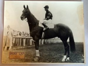 The PHAR LAP photo.