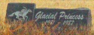 GLACIAL PRINCESS' headstone, in the infield at Beulah Park. Photo courtesy of the Ohio Thoroughbred