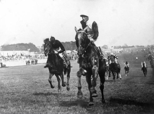 THE TETRARCH_woodcote-stakes-at-epsom-G8XXWX